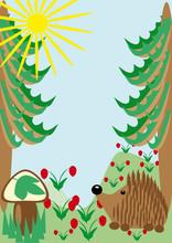 Hedgehog On A Wood Glade. Illustration
