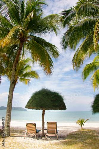 green grass umbrella and chairs on beach Fototapeta