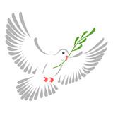 White dove - 30630263