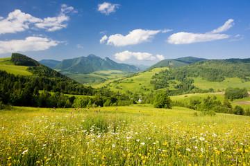 Fototapeta Góry Mala Fatra, Slovakia