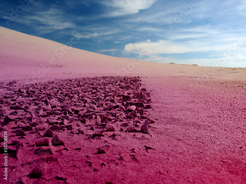 Photo Stands Crimson desert landscape