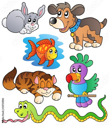 kolekcja-happy-pets-1