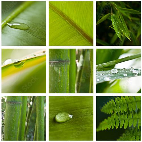 zielony-sklad-natury