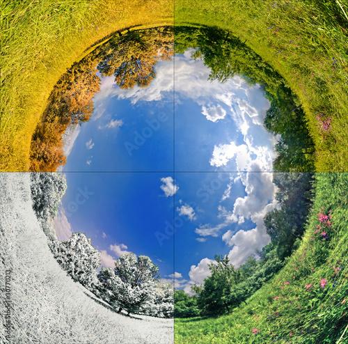 Fotografie, Tablou  Four seasons