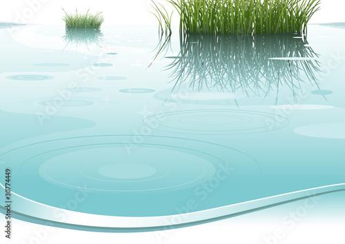 Fototapeta nature background obraz