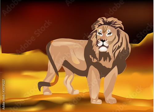 Foto op Plexiglas Leeuw lion in sand desert illustration