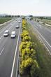 Vista de una carretera con trafico de vehiculos