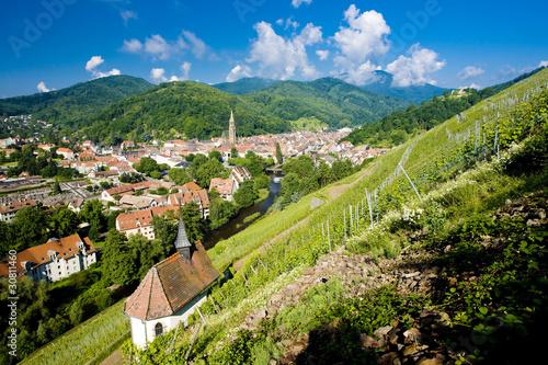 grand cru vineyard and Chapel of St. Urban, Thann,Alsace,France Wallpaper Mural