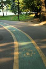 Cycle-track (Bike Lane)
