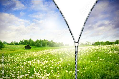 Valokuva  Zipper unzipped green field.