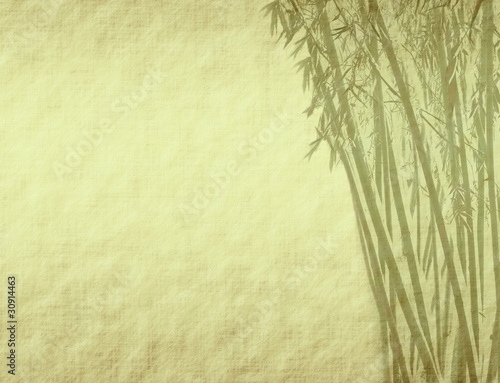 bamboo on old grunge antique paper texture .
