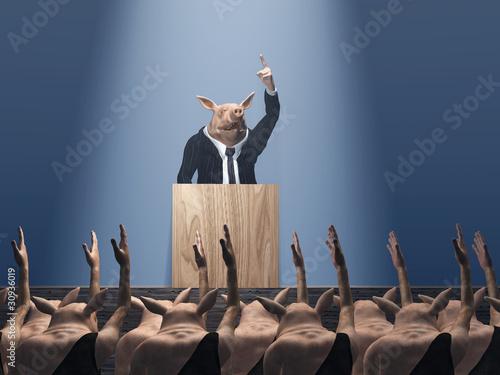 Fotografie, Obraz  vote at the pig meeting