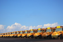 Row Of School Buses