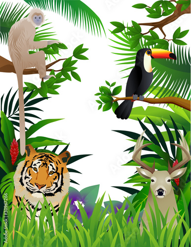 dzikie-zwierze-w-dzungli