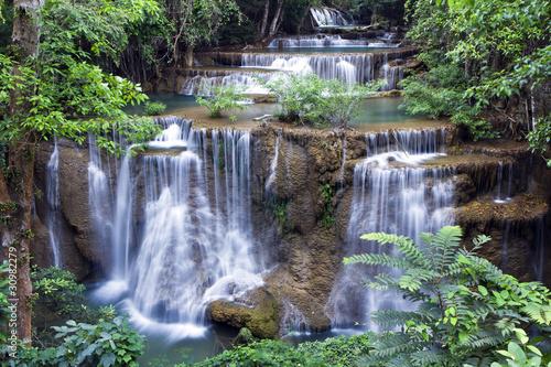 Wall Murals Ostrich waterfall forest