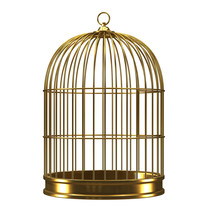 3d Gilded Bird Cage