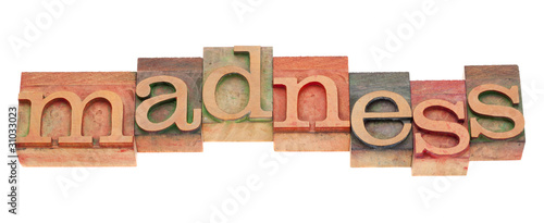 madness word in letterpress type Canvas Print