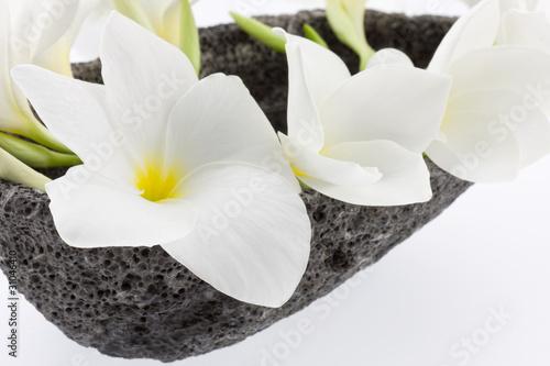 Fotobehang Spa fleurs blanches de frangipanier sur pierre