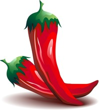 Peperoncino Rosso Piccante -Red Hot Chili Pepper-Vector