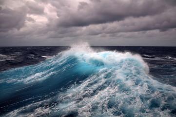 Fototapeta Morze sea wave