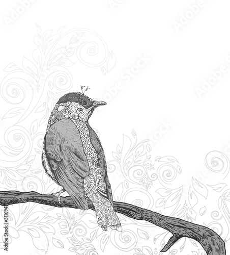 Hand Drawn Bird on Branch.