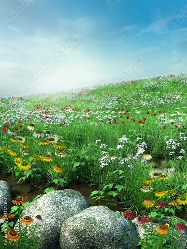 Wiosenna sceneria z kwiatami i skałami - 31172651