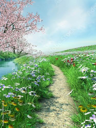 Ścieżka nad rzeką na wiosennej łące - 31172653