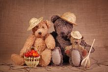 Three Teddy Bear In Autumn