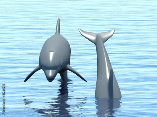 Staande foto Dolfijnen Two dolphins floating in ocean.