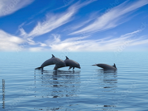 Staande foto Dolfijnen Three dolphins.