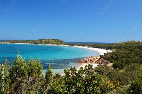 Lingua di spiaggia capo coda cavallo - Sardegna Canvas Print