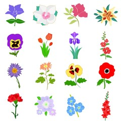 Set of flowers. Vector