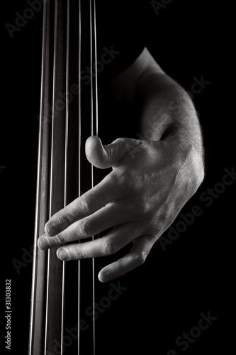 Obraz upright bass - fototapety do salonu
