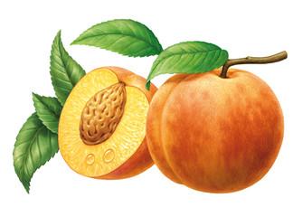 Pfirsiche und Blätter