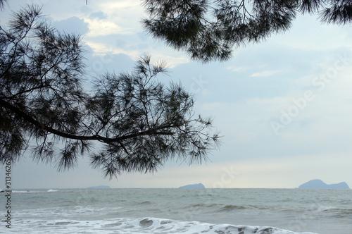 South China sea to Borneo. - 31346265