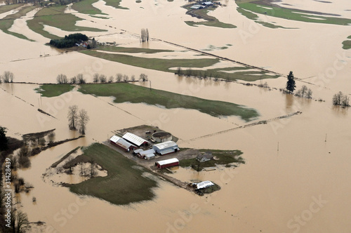 Fotografie, Obraz  Washington State Flood