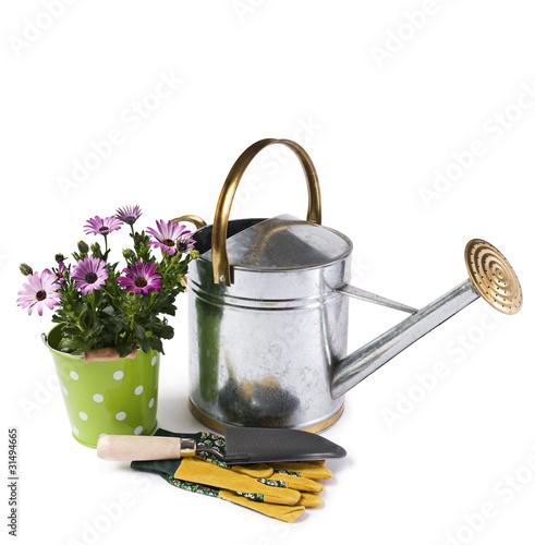 Fotografia Gardening