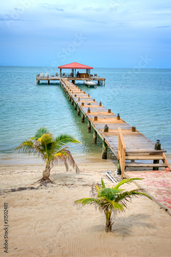 Photo Dock on the Beach in the Country of Belize