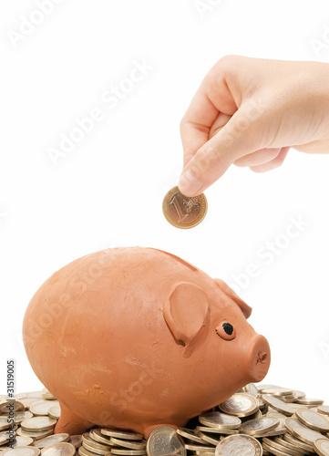 Fotografía  piggy bank savings