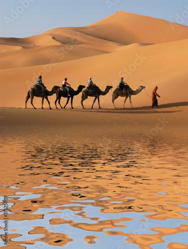 Staande foto Marokko Camel Caravan in Sahara Desert
