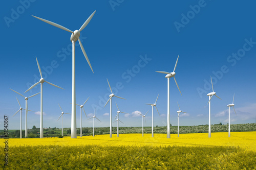 Fotografie, Obraz  Windkrafträder in einem Rapsfeld