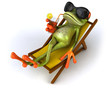 canvas print picture Grenouille et chaise longue
