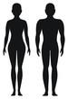 Proporcjonalne kształty mężczyzny i kobiety