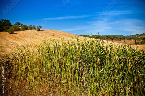 Fotografie, Obraz  Landscape of national park Arrabida.