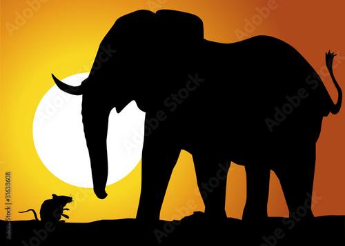 Paysage_Souris_Elephant Wallpaper Mural