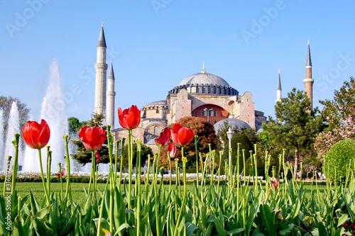 Poster Turquie Garden of Hagia Sophia