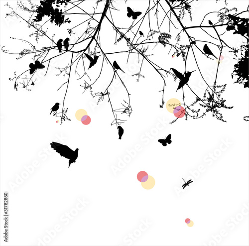 Stickers pour portes Oiseaux sur arbre tree and bird