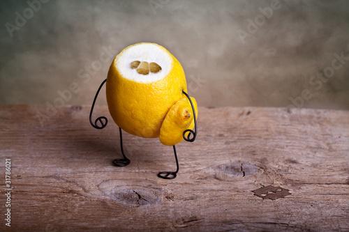 Fotografie, Obraz  Stilleben mit Zitrone