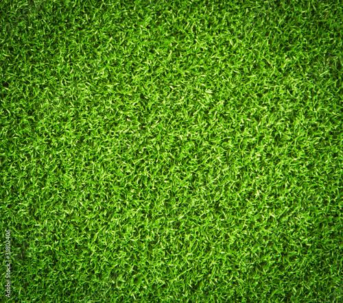 Foto op Plexiglas Groene green grass background
