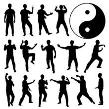 Martial Art Kung Fu Tai Chi Se...